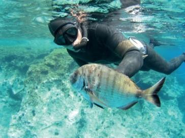 Spearfishing \ Koukounaries Area Activities